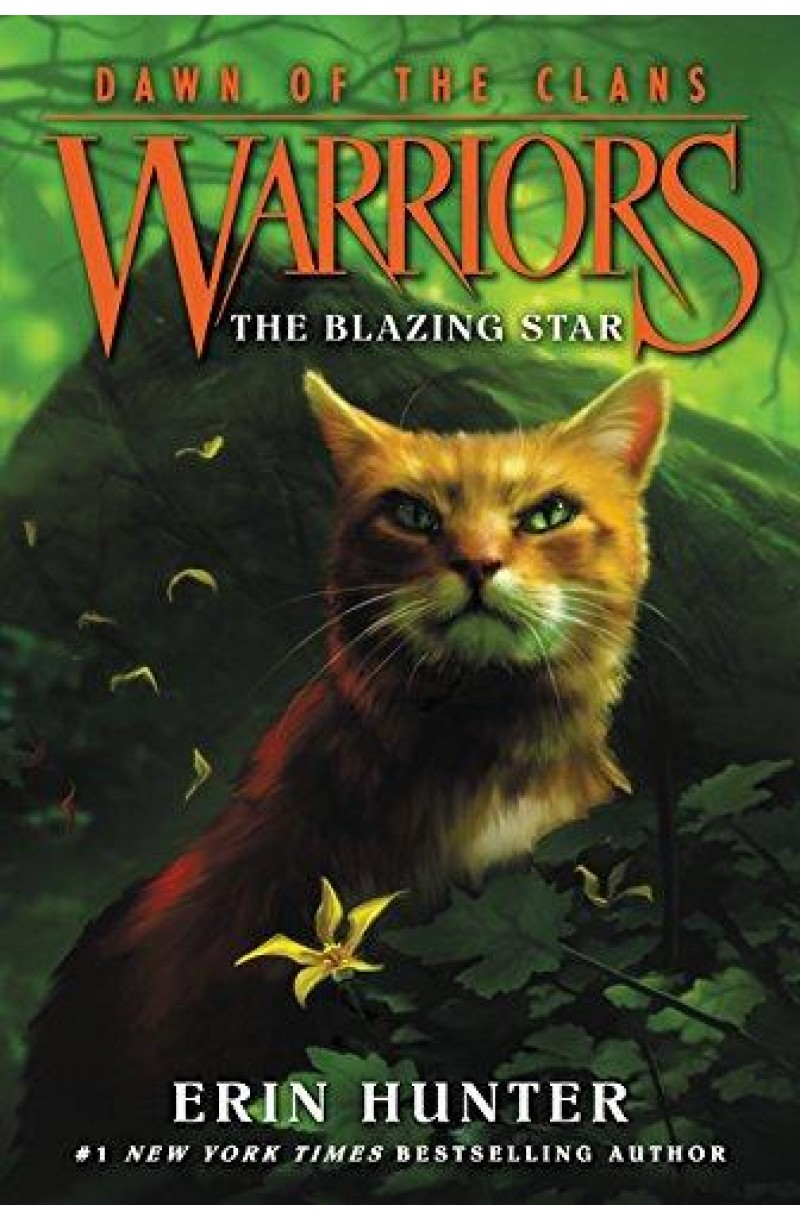 Warriors: Dawn of Clans 4: The Blazing Star