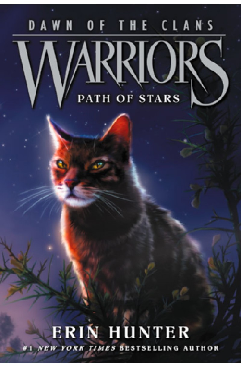 Warriors: Dawn of Clans 6: Path of Stars