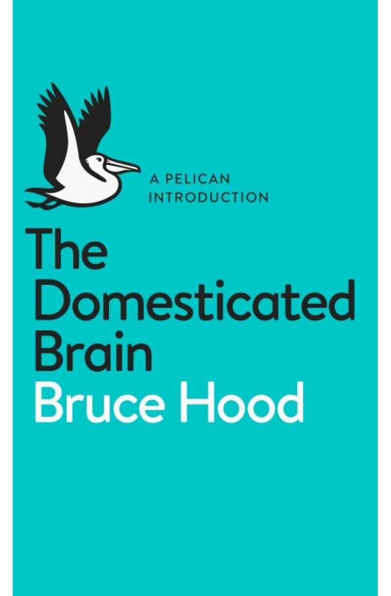 Domesticated Brain (Pelican Books)