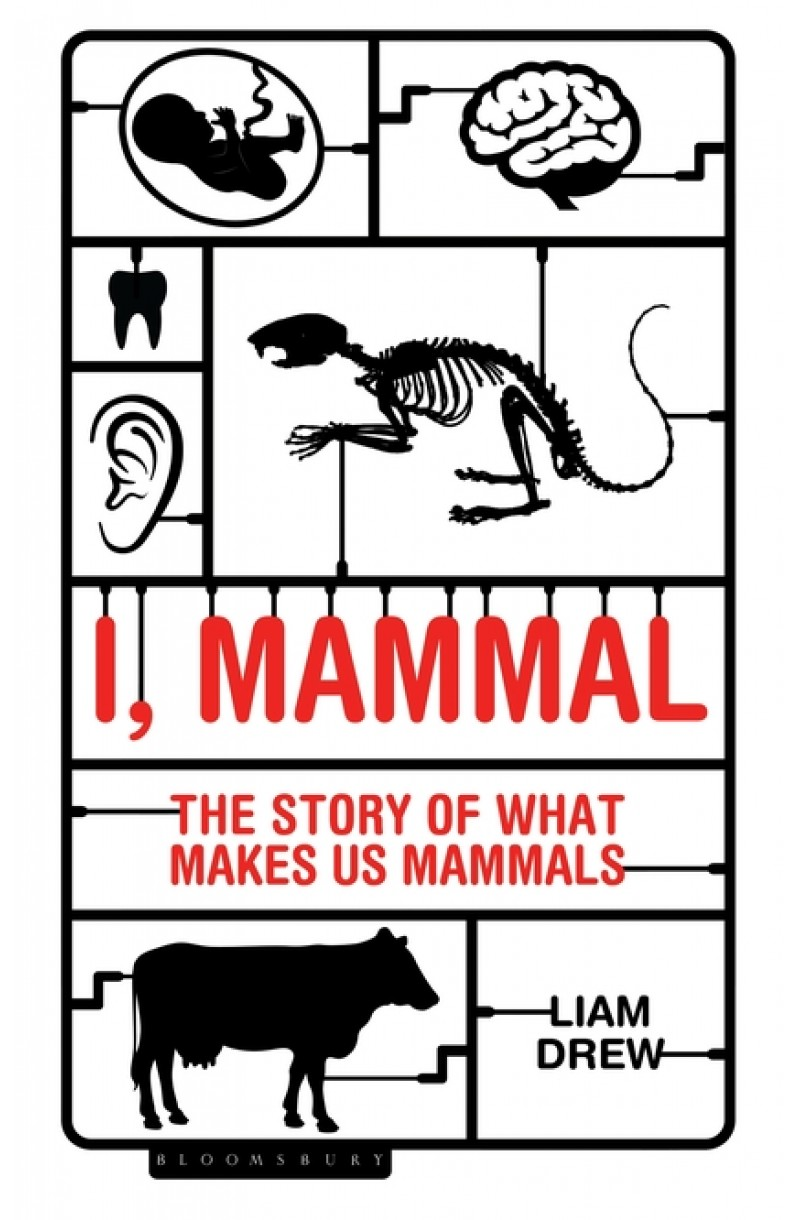 I, Mamal: The Story of What Makes Us Mammals