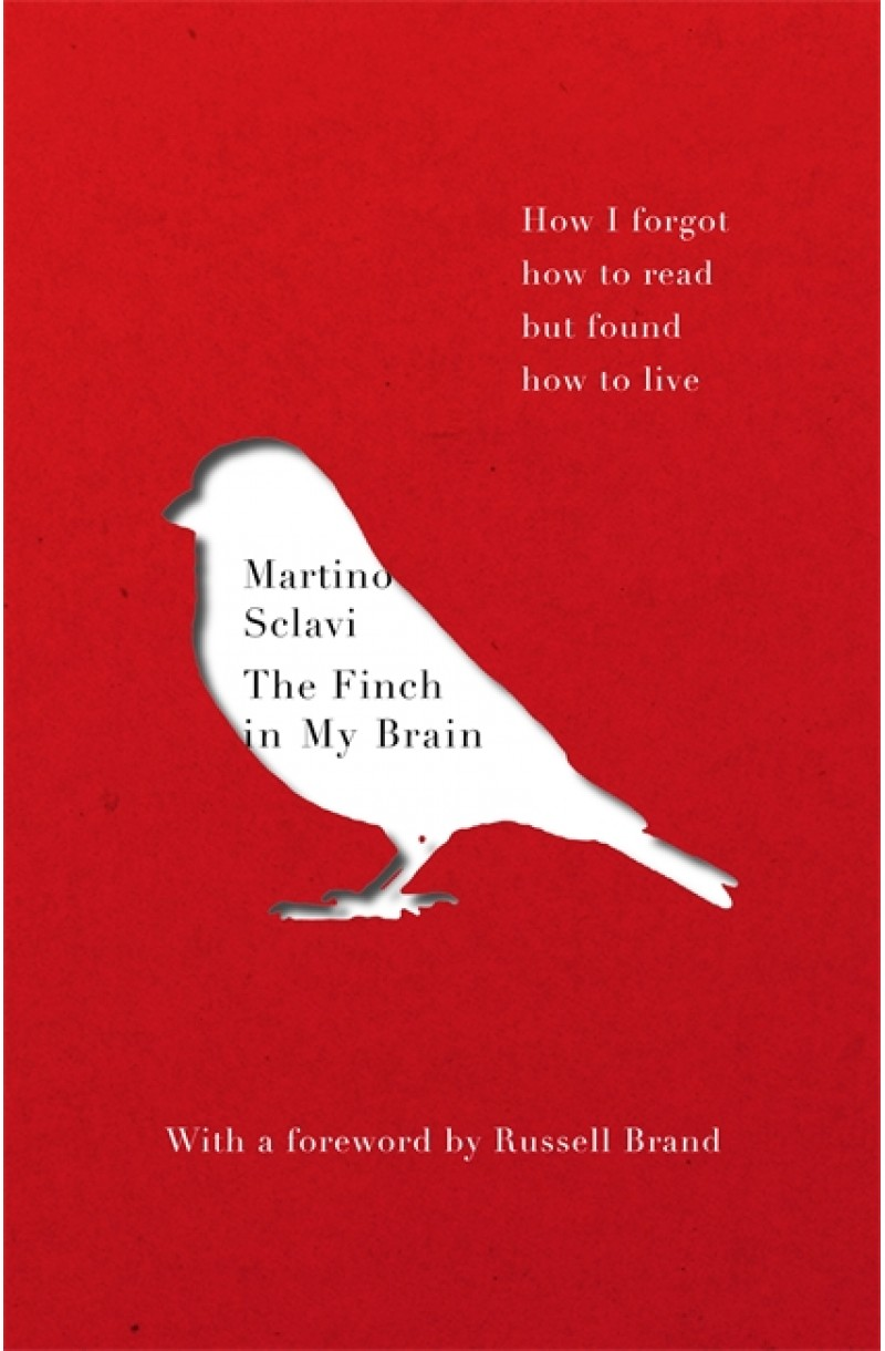 Finch in My Brain: How I forgot how to read but found how to live