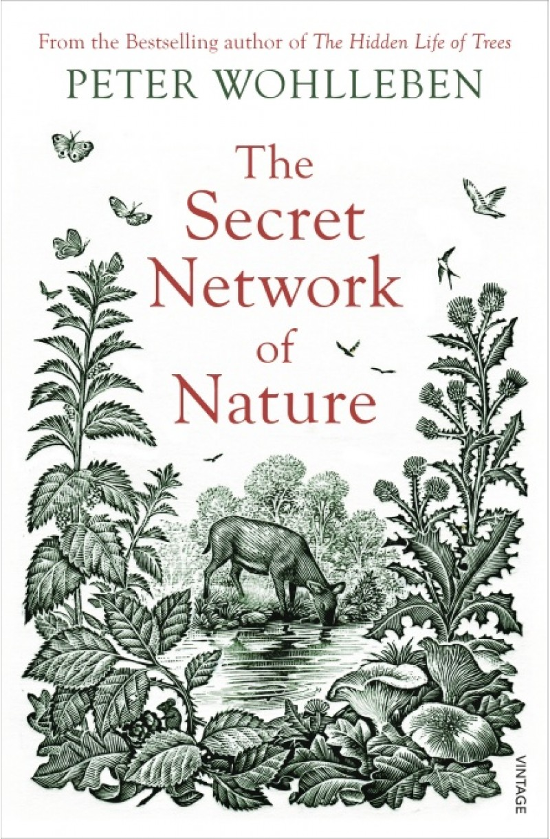 Secret Network of Nature: The Delicate Balance of All Living Things
