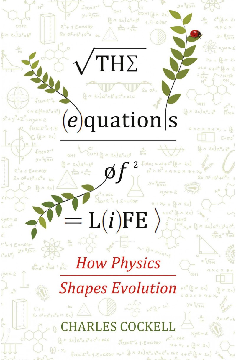 Equations of Life: How Physics Shapes Evolution