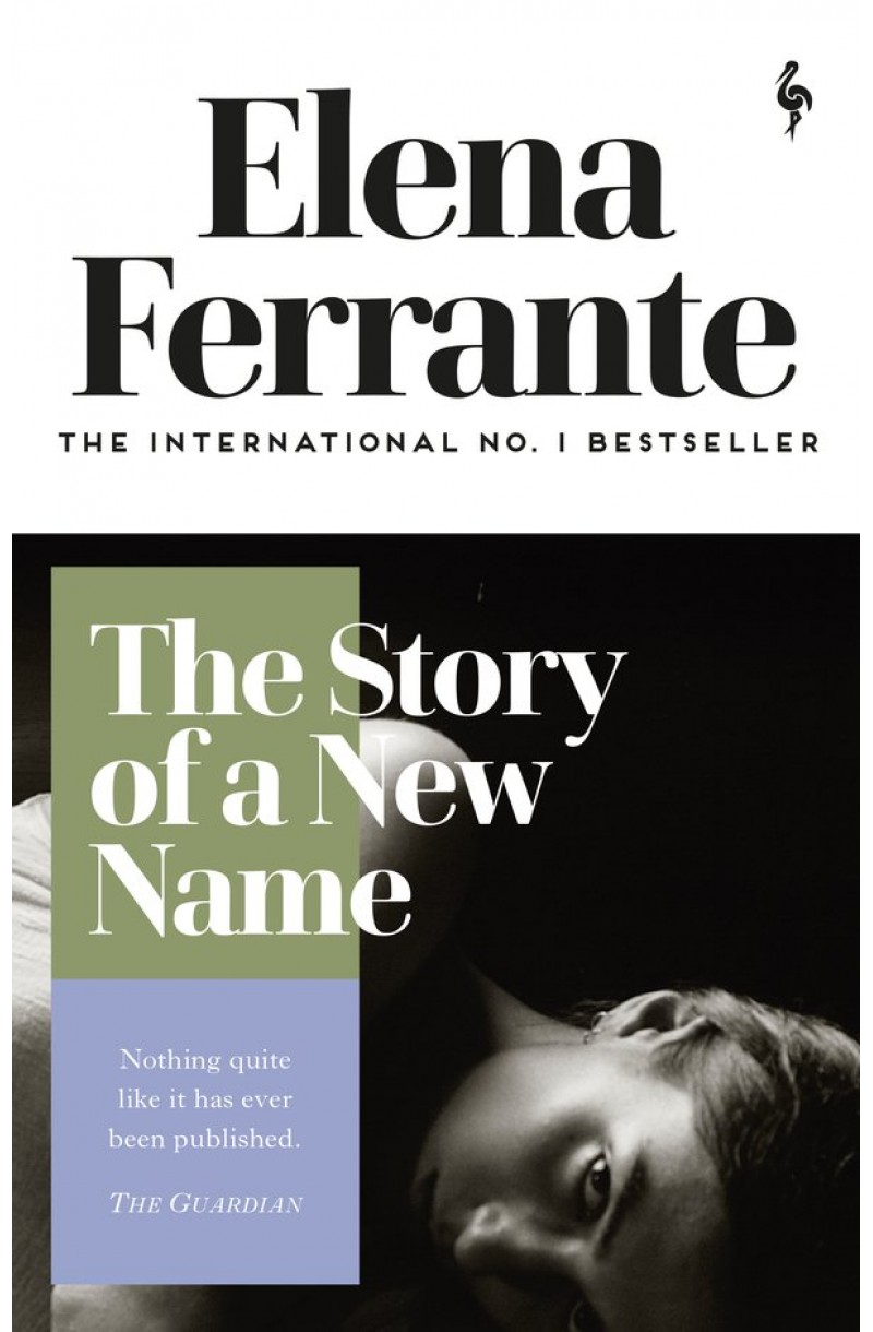 Neapolitan Novels 2: Story of a New Name