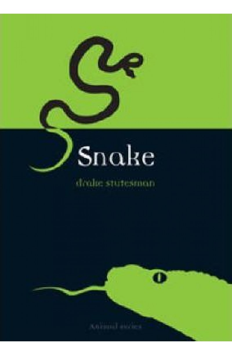 Snake (Animal Series)