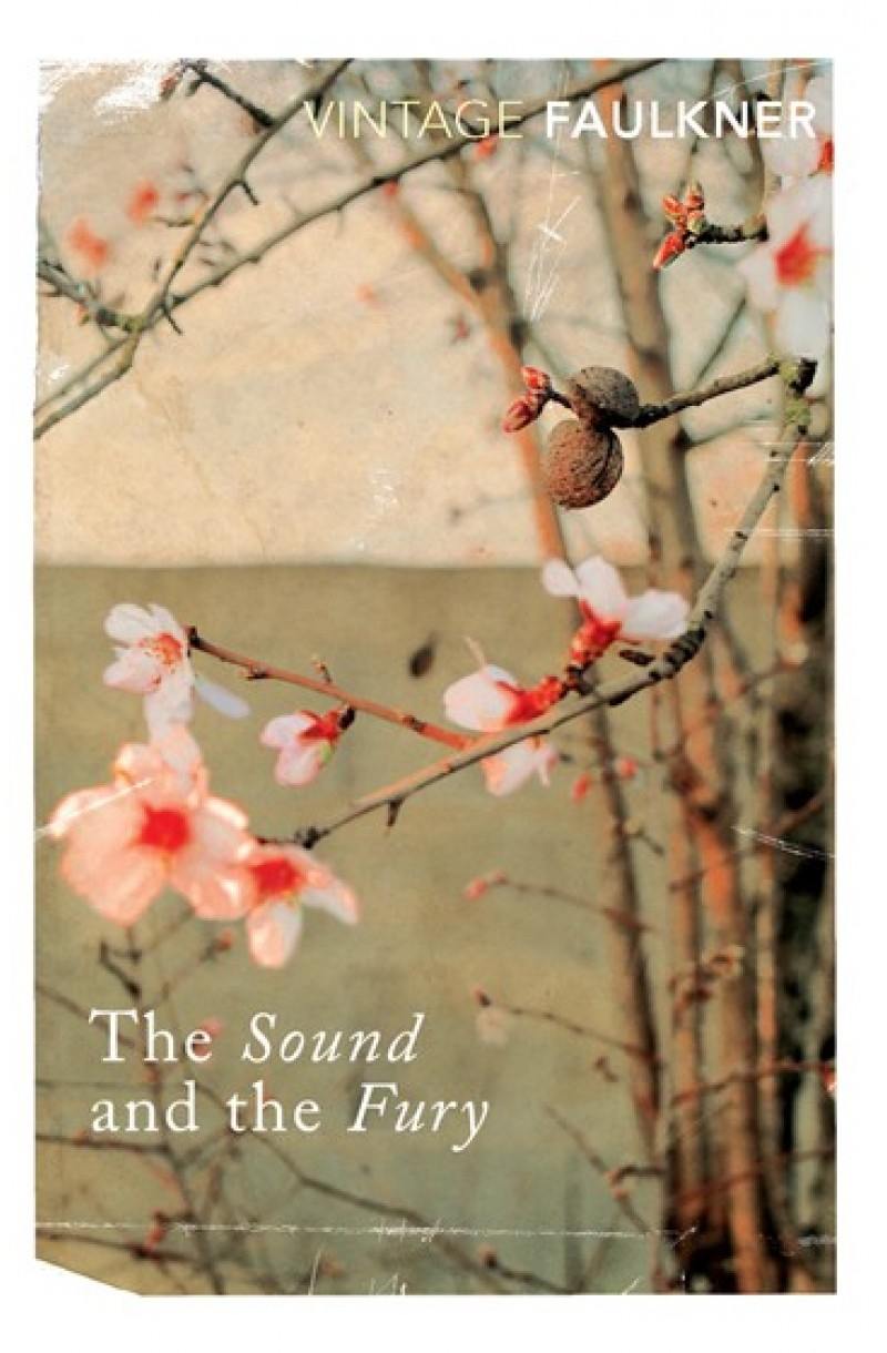 Sound and the Fury (Vintage Classics)