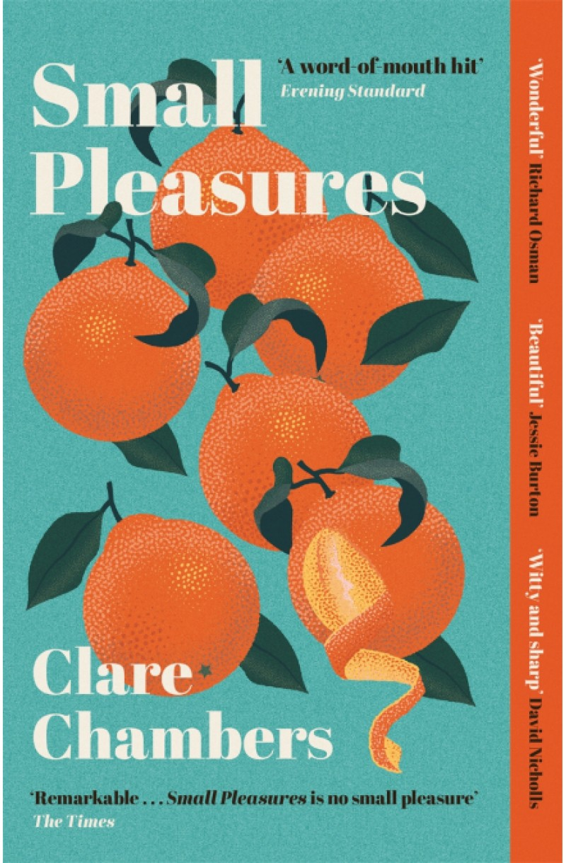 Small Pleasures (LONGLISTED FOR THE WOMEN'S PRIZE FOR FICTION 2021)