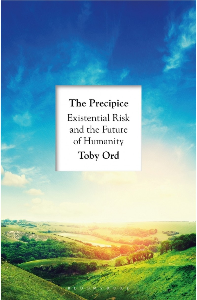 Precipice: 'A book that seems made for the present moment' New Yorker
