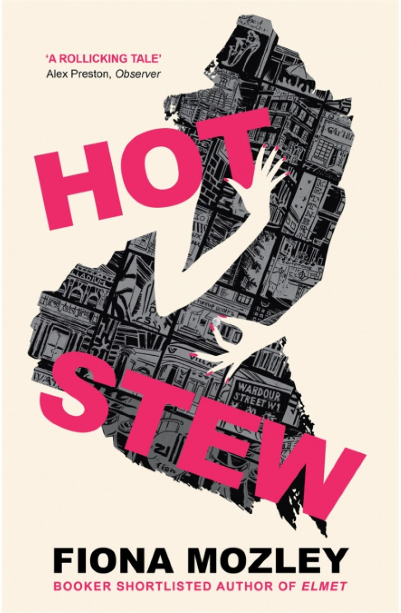 Hot Stew: the new novel from the Booker-shortlisted author of Elmet (format mare)